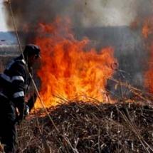 INCONȘTIENȚĂ. 11 incendii de vegetație provocate în Vâlcea, în ultimele 48 de ore