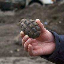 GRENADĂ descoperită într-un sat din VÂLCEA