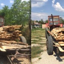 FOTO: TRANSPORT ILEGAL de CHERESTEA la VÂLCEA. Jandarmii au confiscat lemnul