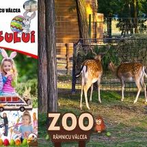De Paşte, activităţi pentru copii la Grădina Zoologică din Râmnicu Vâlcea