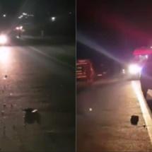 VIDEO. Vâlceanul care a provocat un accident mortal în Olt, arestat. Vezi cine e!