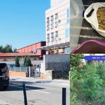 FOTO – VIDEO. PERCHEZIȚII în VÂLCEA. 14 traficanți ridicați, 60 de kg de cannabis depistate