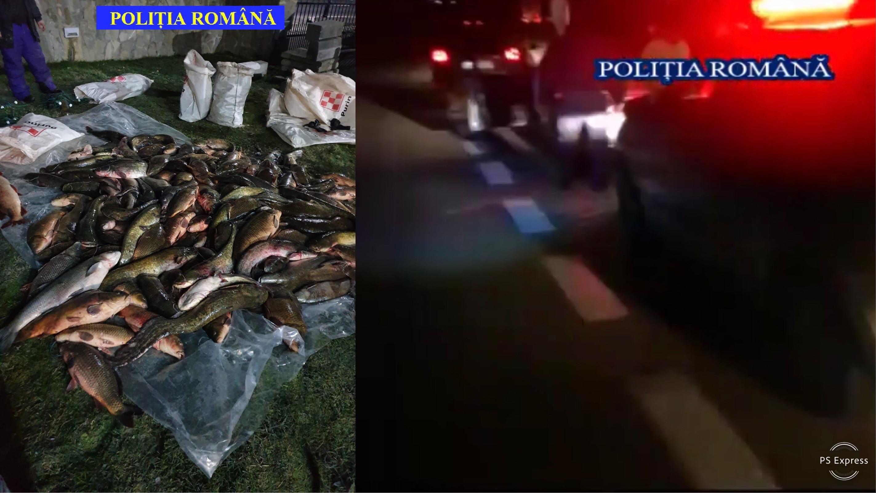 www.gazetavalceana.ro